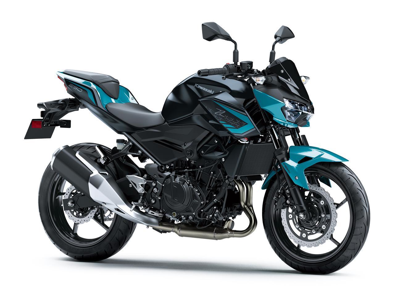 Kawasaki Z250 2021